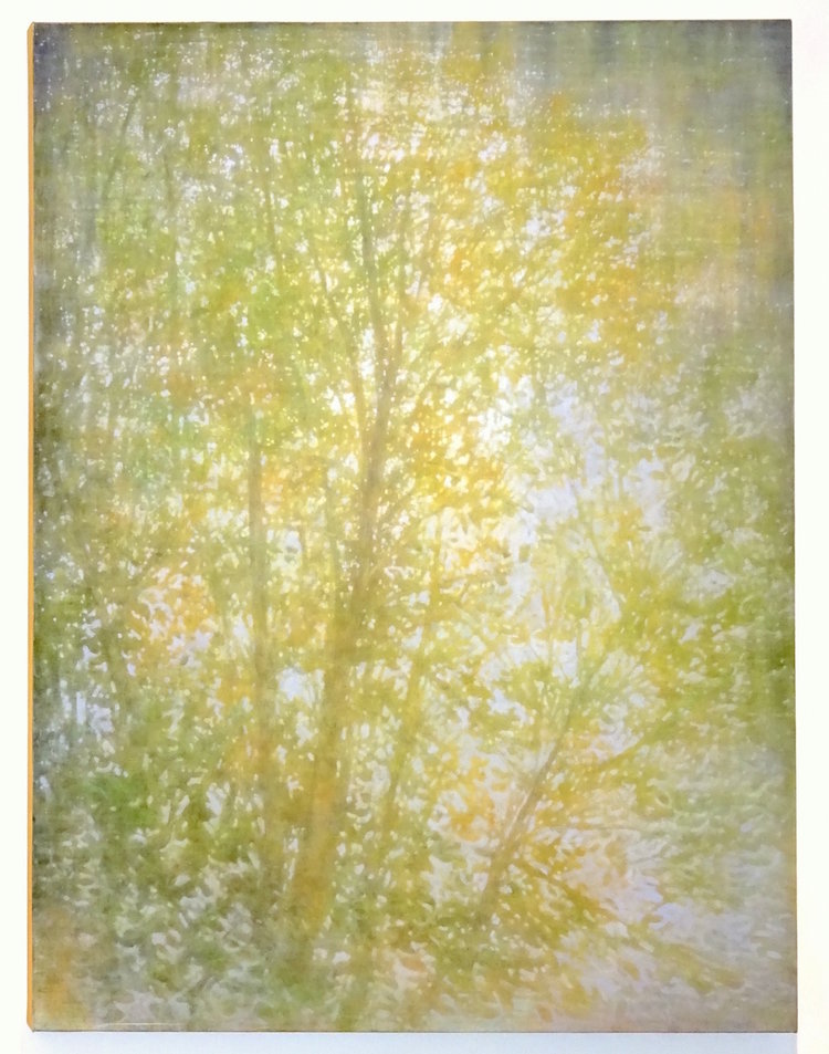Tom Monaghan  Flowing Light ,  2015 Oil on Canvas 60 x 48 inches   $11,500 Offered at: $8,250    I'm Interested!