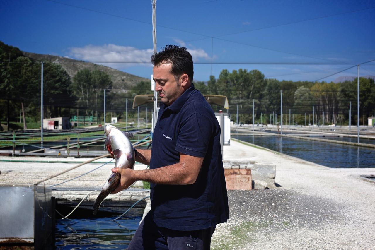 Dino Chiereghin, responsabile di un importante allevamento di trote a Bussi situato a monte del paese, dove le acque sono purissime ed incontaminate. Bussi sul Tirino (Pescara), 2014.