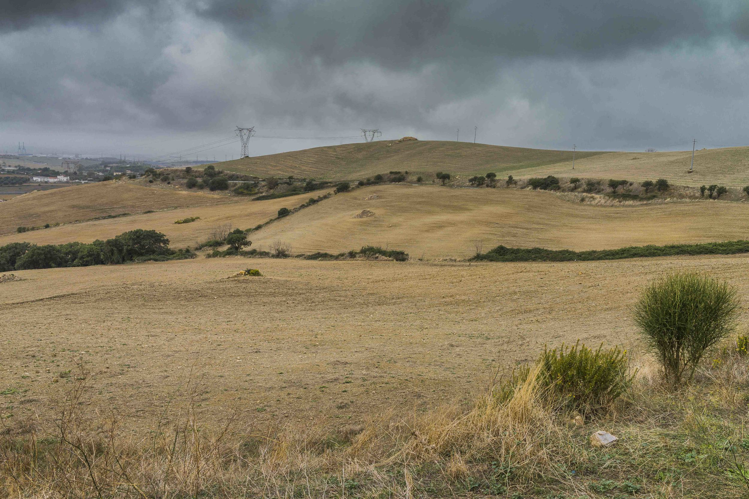 Zona agricola a nord di Civitavecchia, in prossimità del comprensorio militare S. Lucia. Le falde acquifere sotterranee sono minacciate da sversamenti non autorizzati di sostanze tossiche di uso agricolo. Ottobre, 2014. (David Pagliani Istivan)