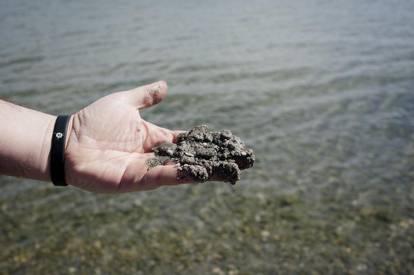 Dettaglio della sabbia presente vicino la riva.