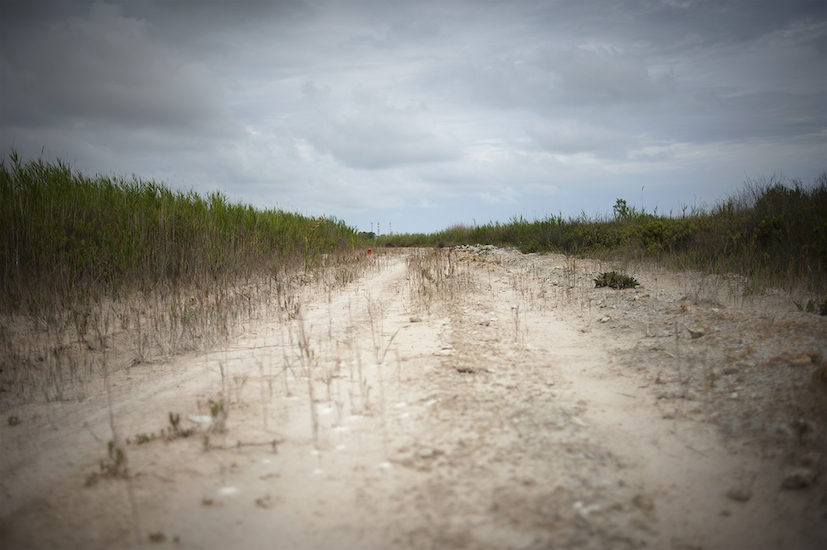 Terreno inquinato nel tratto costiero di Micorosa.