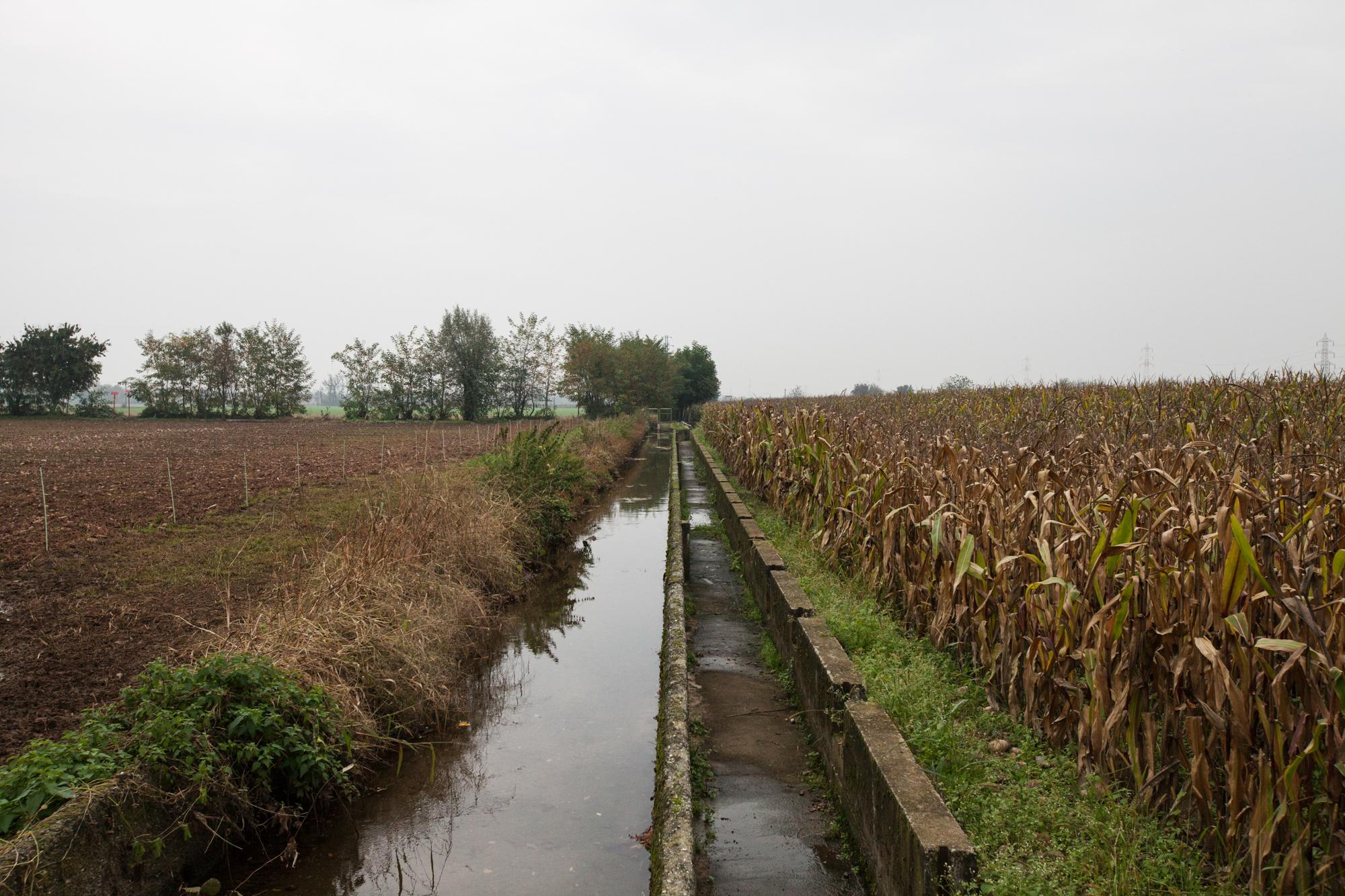 Lo scarico della fabbrica per quasi un secolo la principale sorgente delle rogge che andavano ad irrigare i campi a sud della fabbrica.Brescia / Italia. Ottobre 2013