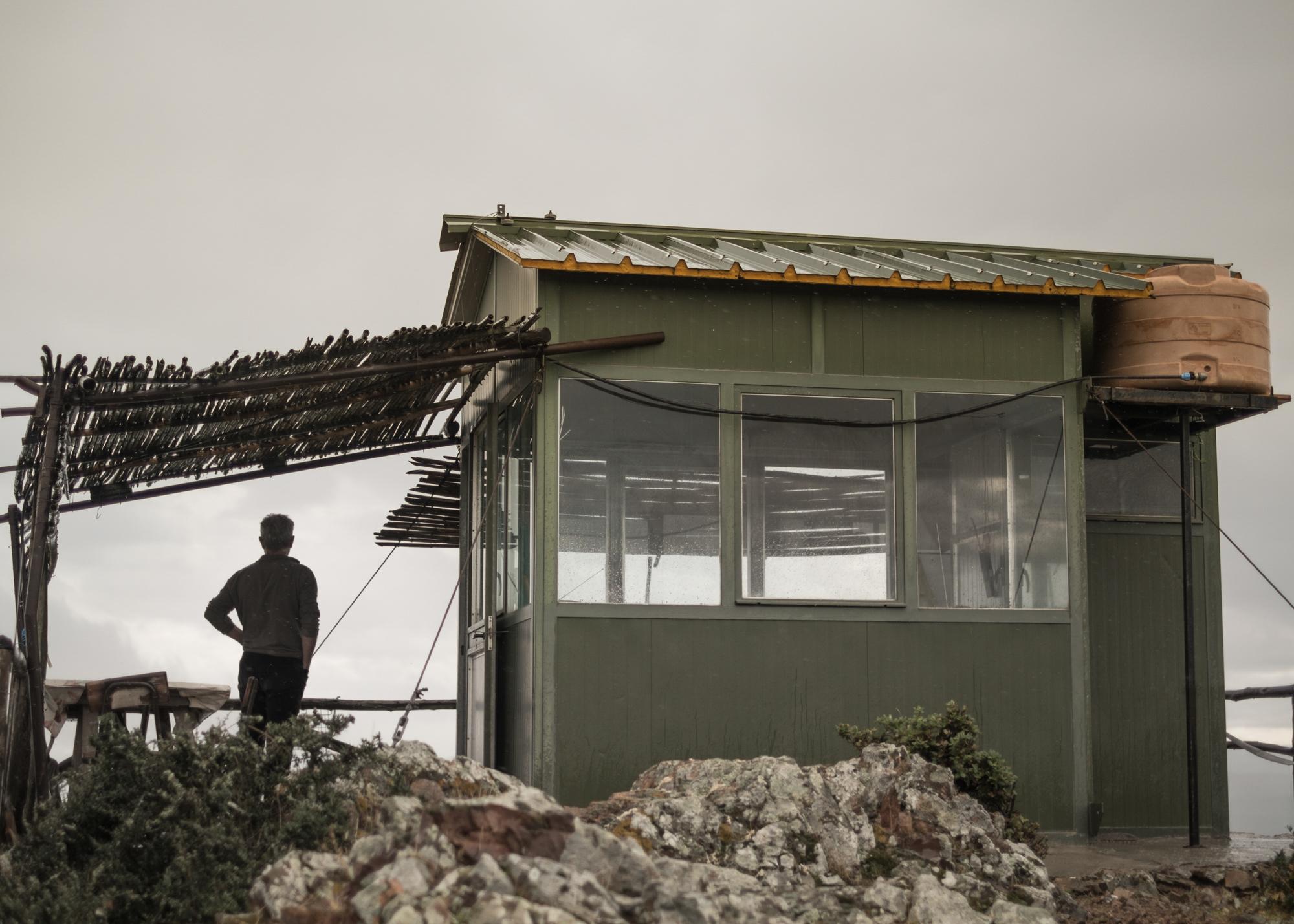 Pastore all'interno del PISQ, Sa Maista, comune di Villaputzu, poligono a terra.