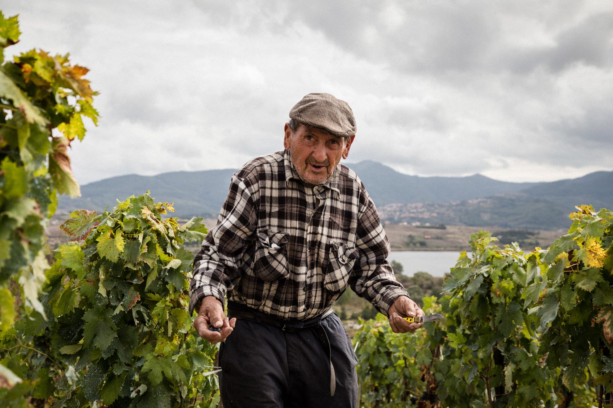Un anziano signore della zona. Ogni anno coltiva i propri vigneti per produrre uva per se e la sua famiglia. Tito (Zona Industriale), Ottobre 2015