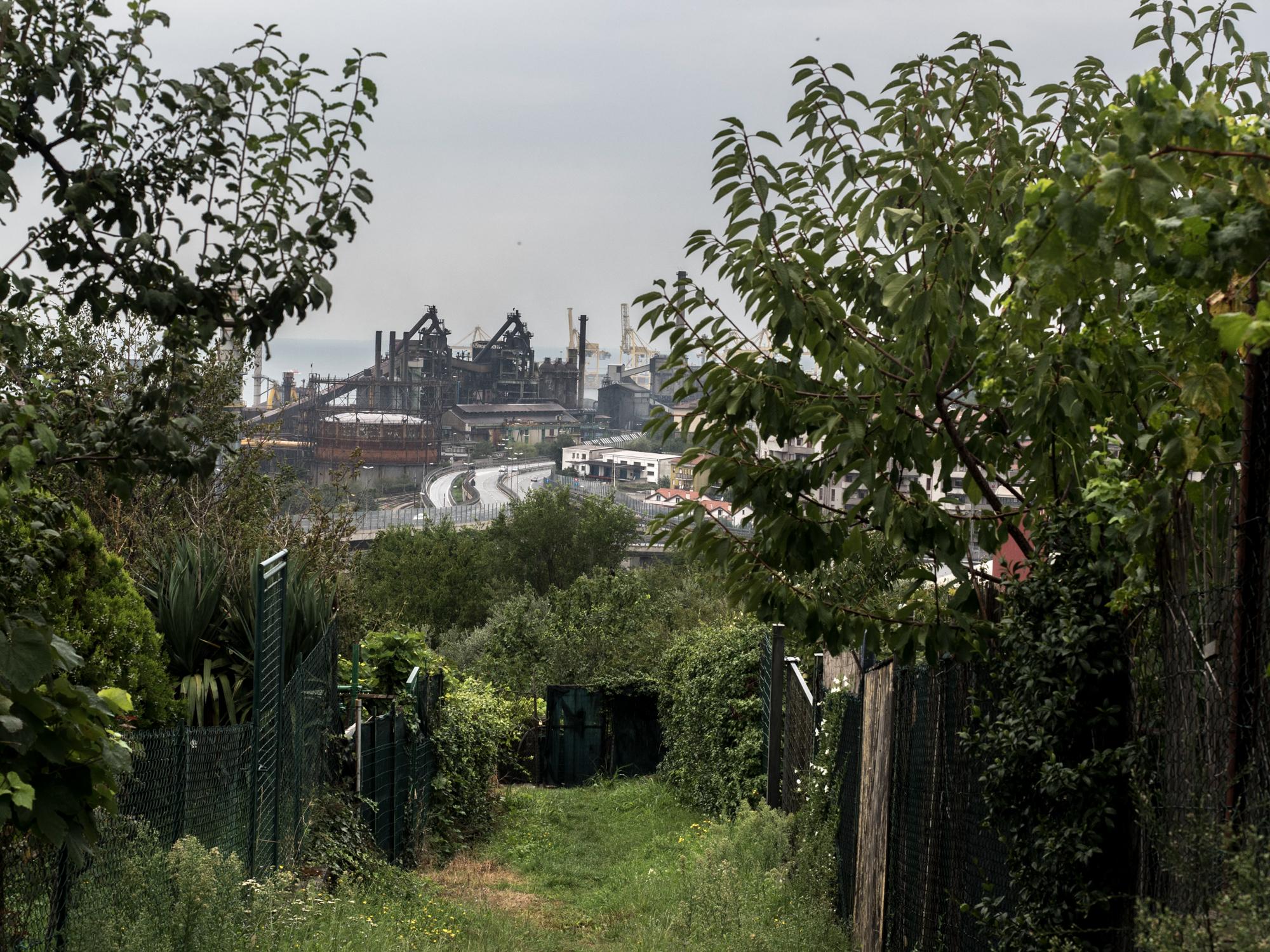 Veduta della Ferriera di Servola a Trieste, 2015. Costruita nel 1896, è un complesso industriale specializzato nella produzione di ghisa. Si estende per 560.000 metri quadri, in cui sorgono la cokeria, l'impianto di agglomerazione, due altiforni e la macchina a colare.