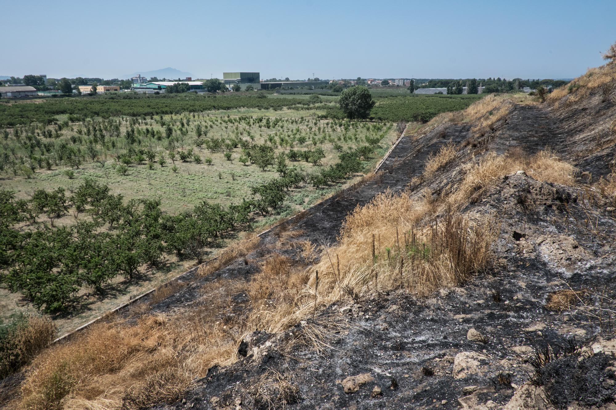 Discarica  Novambiente , Giugliano, (NA), 2015. Terreni agricoli coltivati confinano con la discarica.
