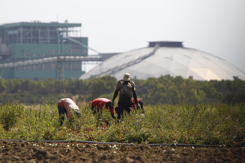 Nonostante molti agricoltori si sono visti costretti a lasciare la zona per le difficoltà nella vendita dei loro prodotti sul mercato, ancora oggi esistono diversi imprenditori agricoli che resistono e lavorano per continuare a far vivere la contrada di Cerano.