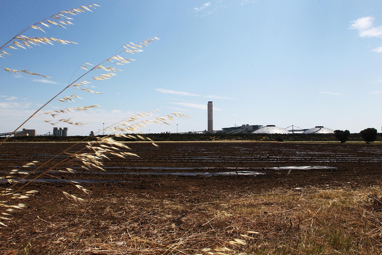 Una veduta della Centrale Enel Federico II, in primo piano un terreno agricolo a ridosso dell'impianto durante la fase di pacciamatura.