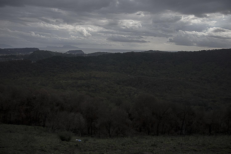 Agnano, Napoli, 2017. Riserva naturale Cratere degli Astroni, oggi gestita dal WWF Italia. E' uno dei più grandi crateri dei campi Flegrei che si trova tra i quartieri di Fuorigrotta, Bagnoli e Pianura ed è situata a 50 metri dalla Discarica di Contrada Pisani di Pianura (NA).