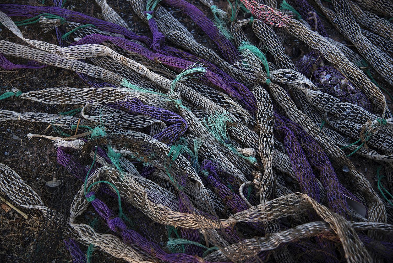"""41° 54' 52"""" N , 15° 40' 20"""" E Foce di Capoiale, Capoiale   Reste usate in mitilicultura, scaricate illegalmente sugli argini del canale di collegamento tra il lago di Varano e il mare."""