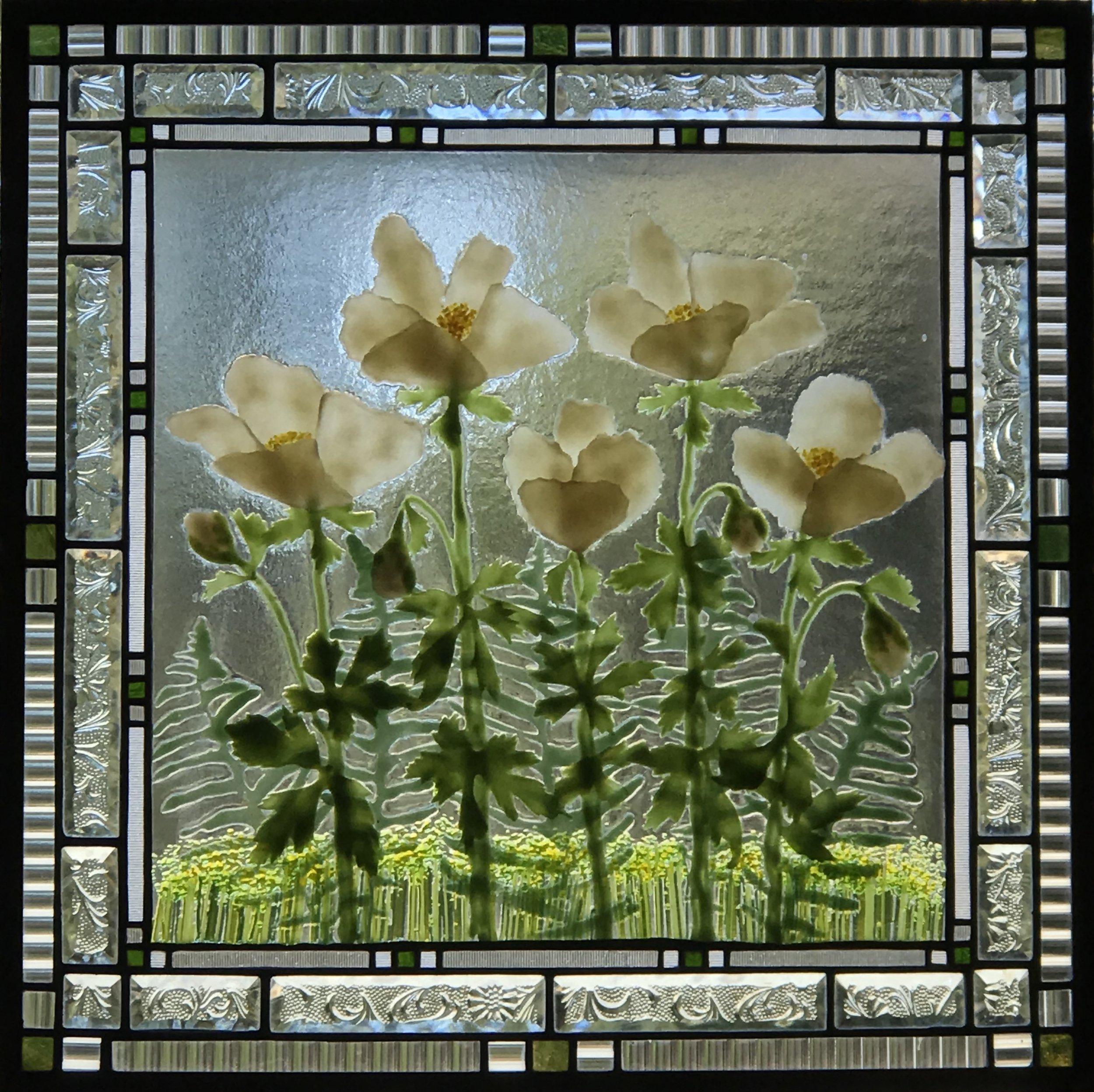 White Anemones.jpg