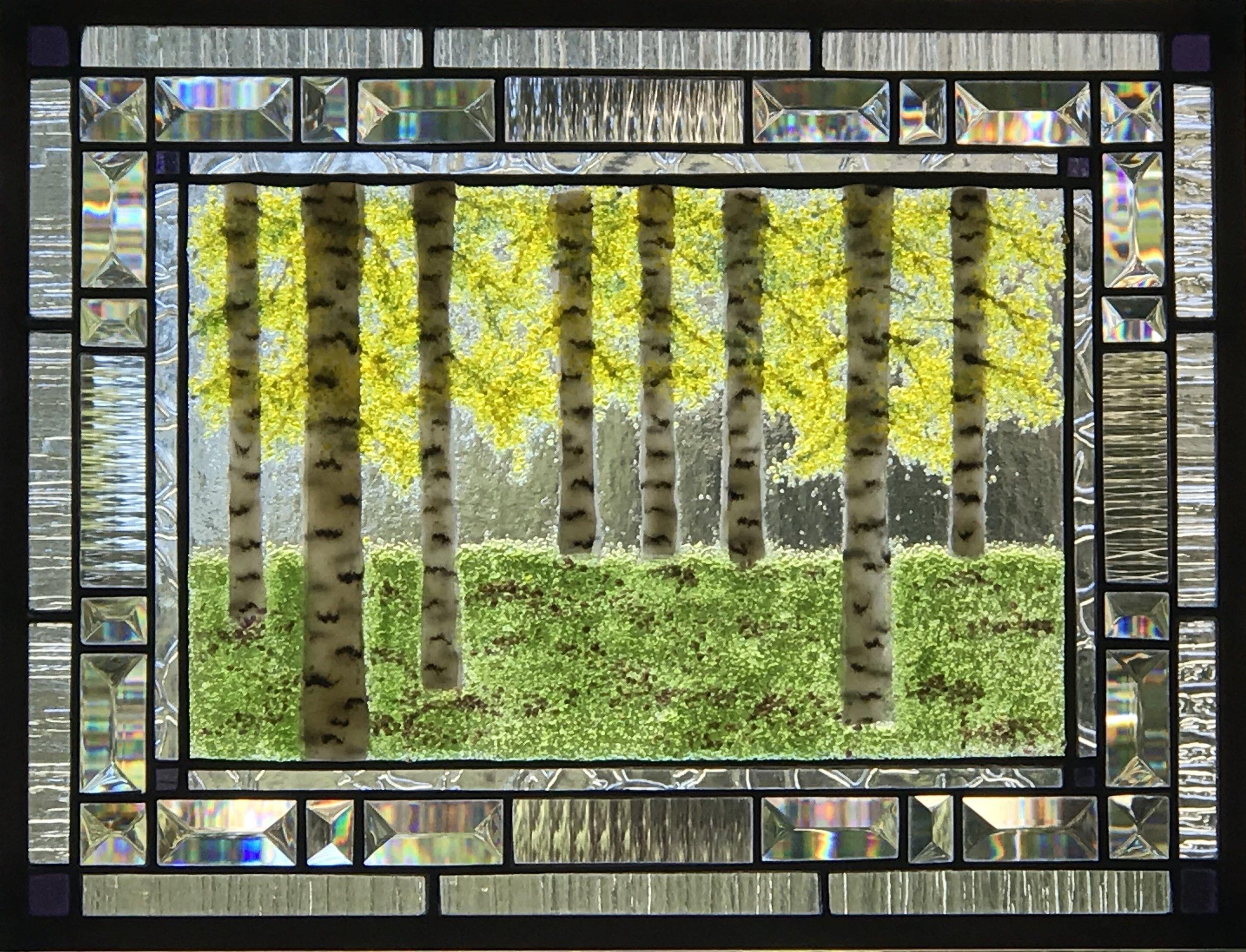 Fall Birch Grove.jpg