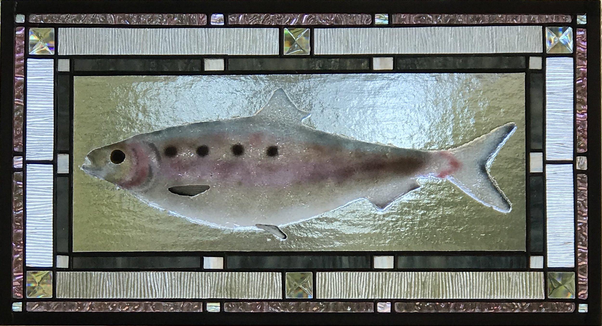 Shad Fish.jpg