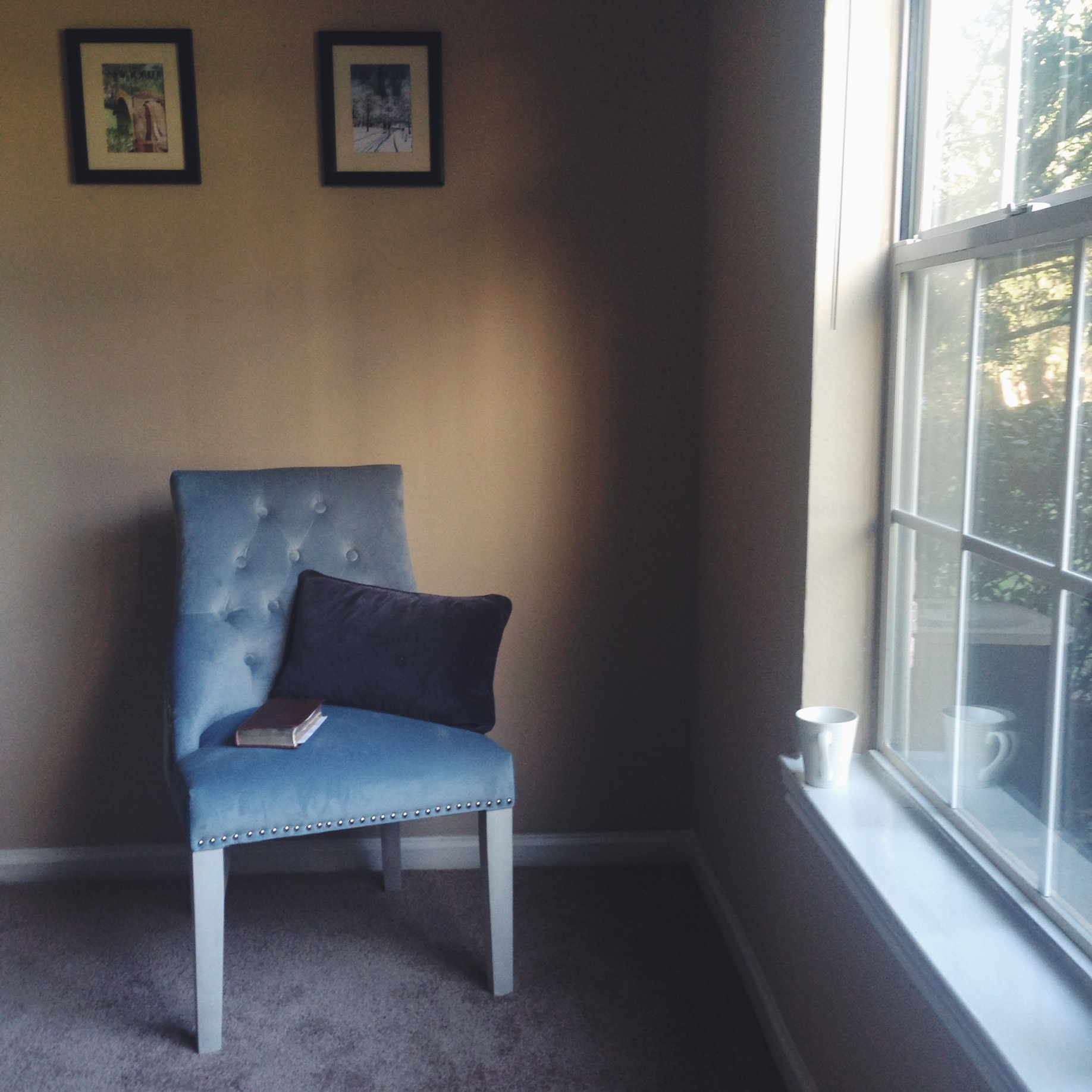 I may not have much furniture, but I do have the reading nook I've always wanted.