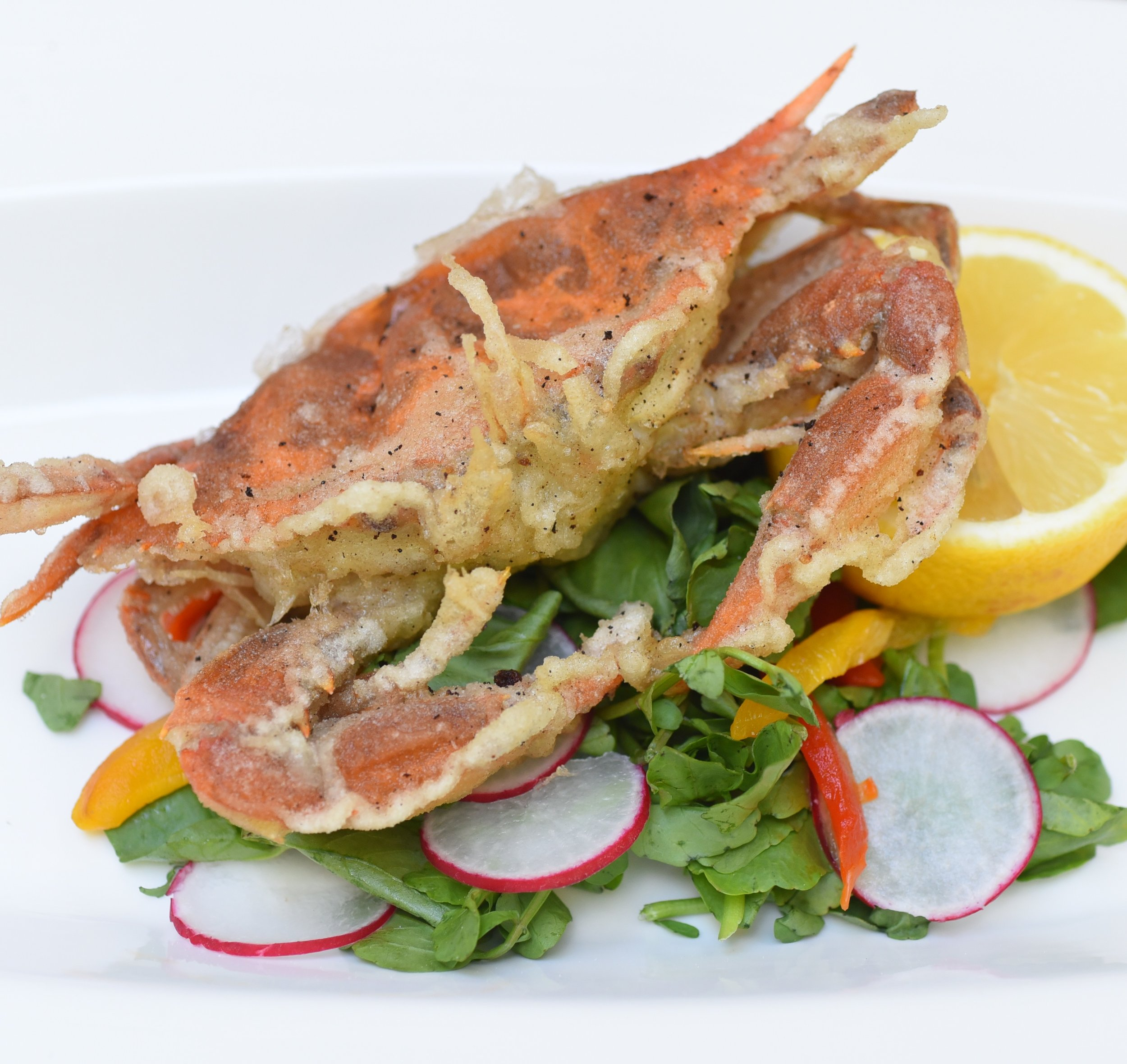 softshel crab 1.JPG
