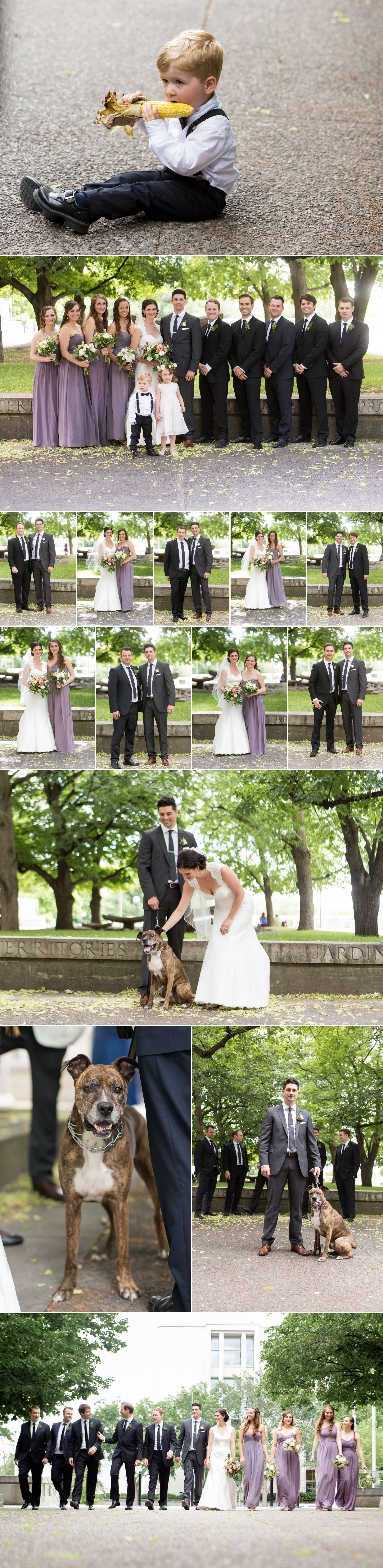 Portraits of a dog, a family, and a wedding party.