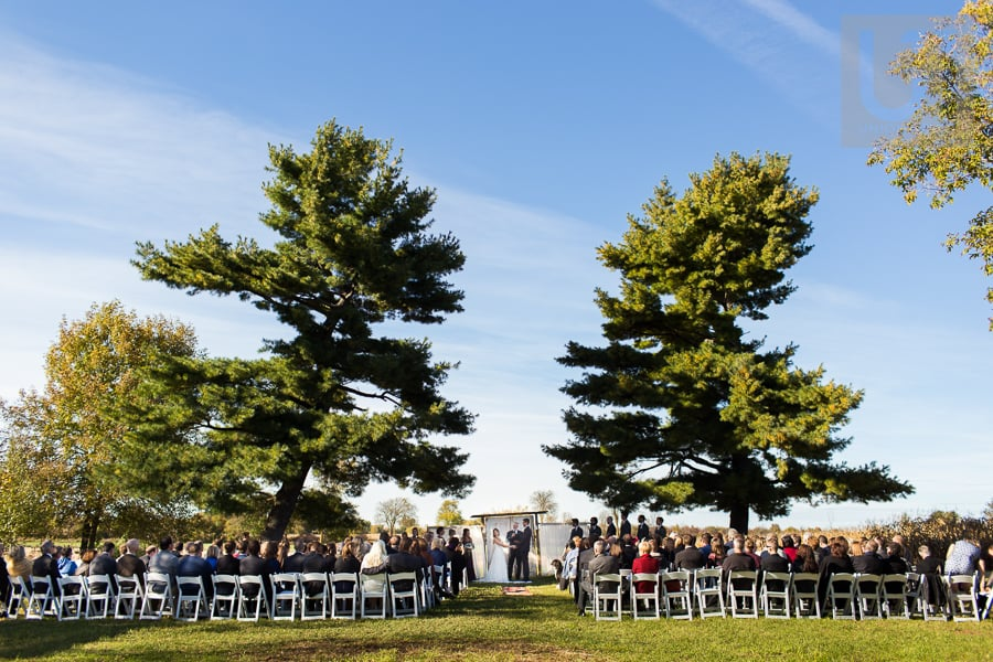 Wide angle shot of outdoor wedding ceremony in Russell, Ontario; set between two large trees.