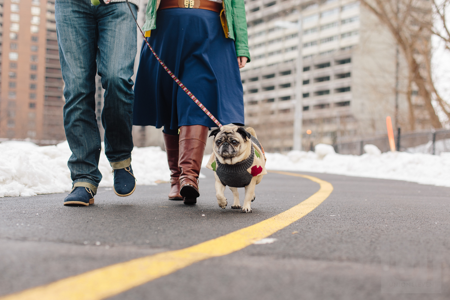 Engagement shoot of the couple walking their dog in downtown ottawa