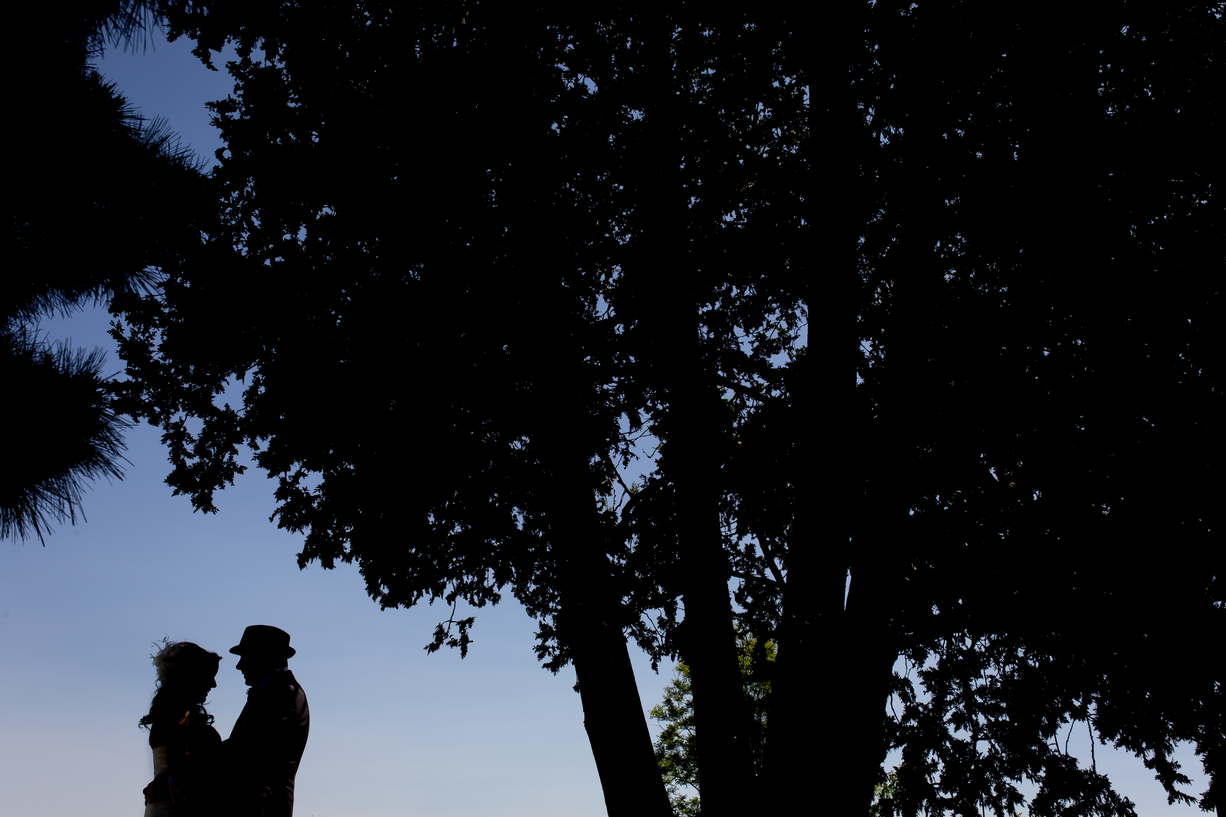 A silhouette photo of the bride and groom outside at the Experimental Farm
