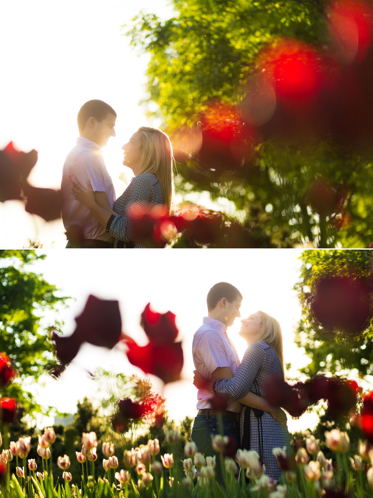 Photos from an engagement shoot in downtown Ottawa amongst the tulips