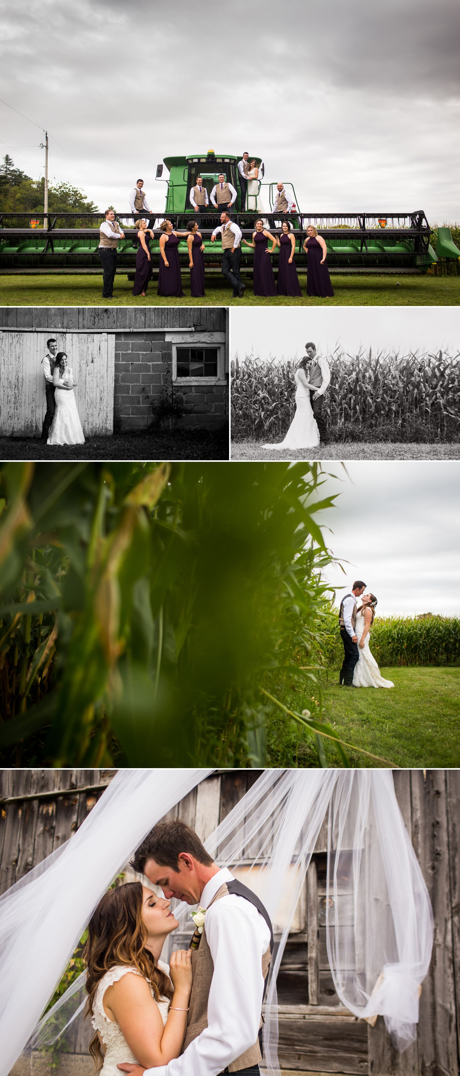 Portraits with the bride and groom and their wedding party at their farm in Carp