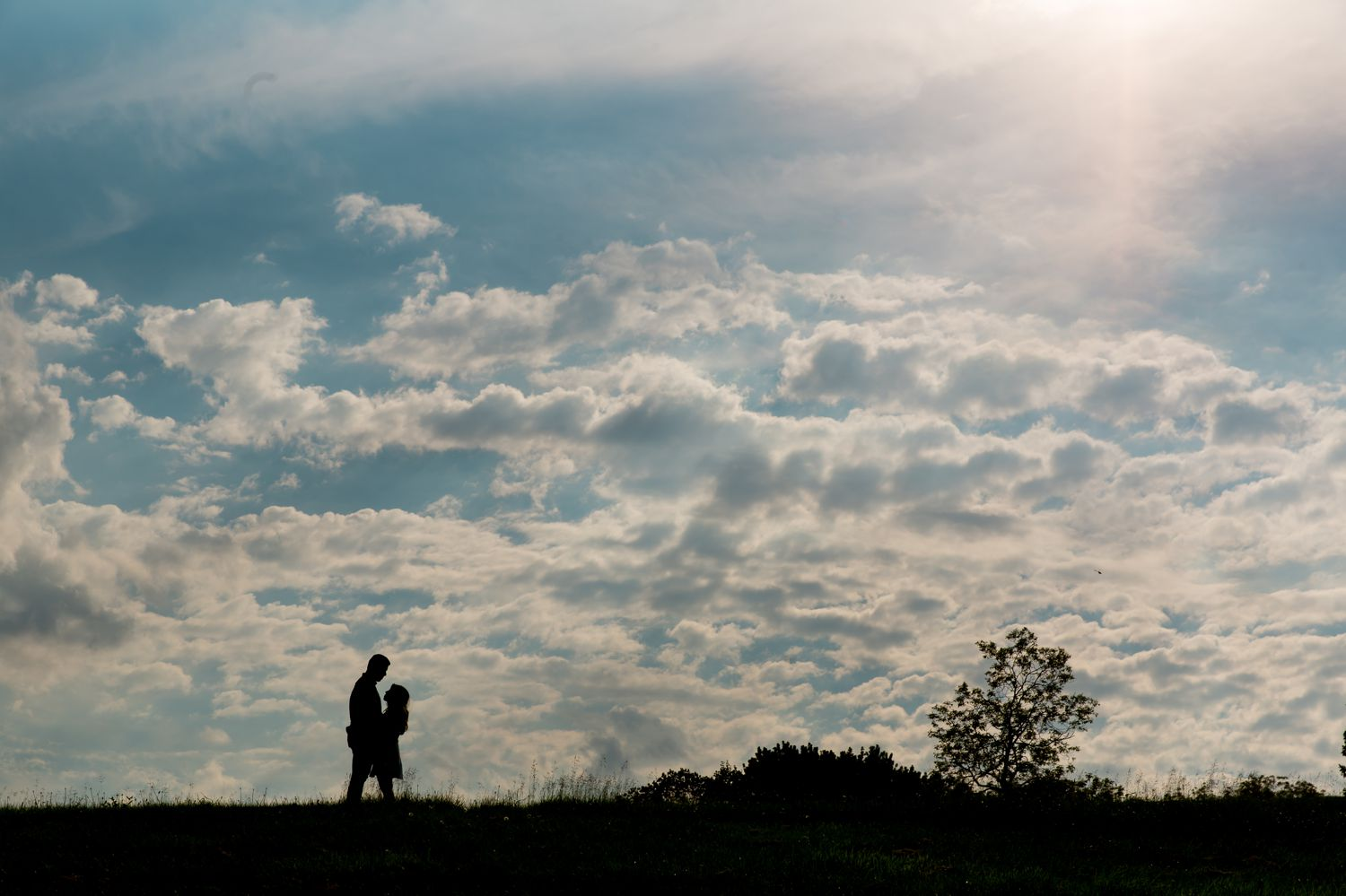 An engagement silhouette portrait taken at the Arboretum in Ottawa, ON