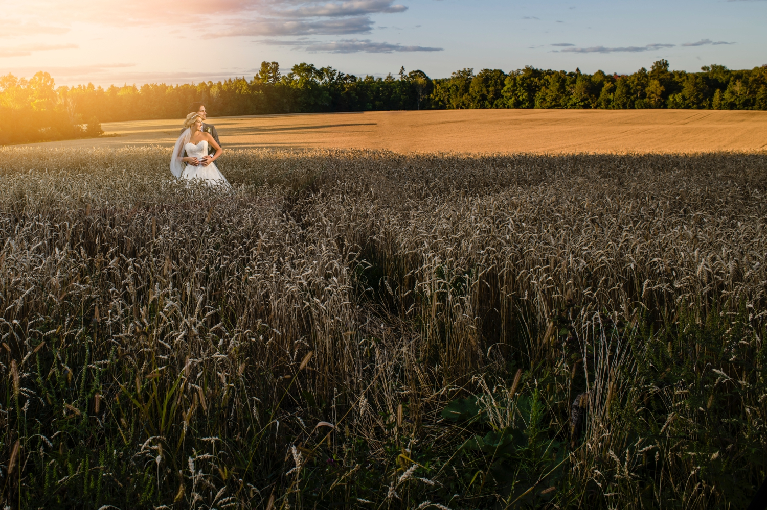 portrait of bride and groom during sunset during a evermore weddings and events wedding reception in almonte ontario