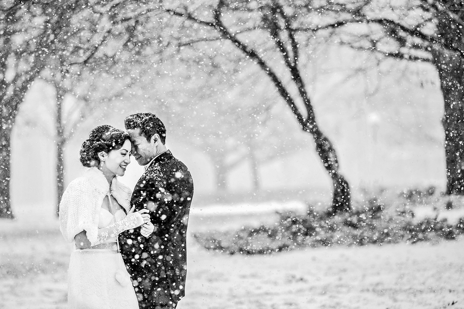 photo of a bride and groom having a moment in confederation park in the snow