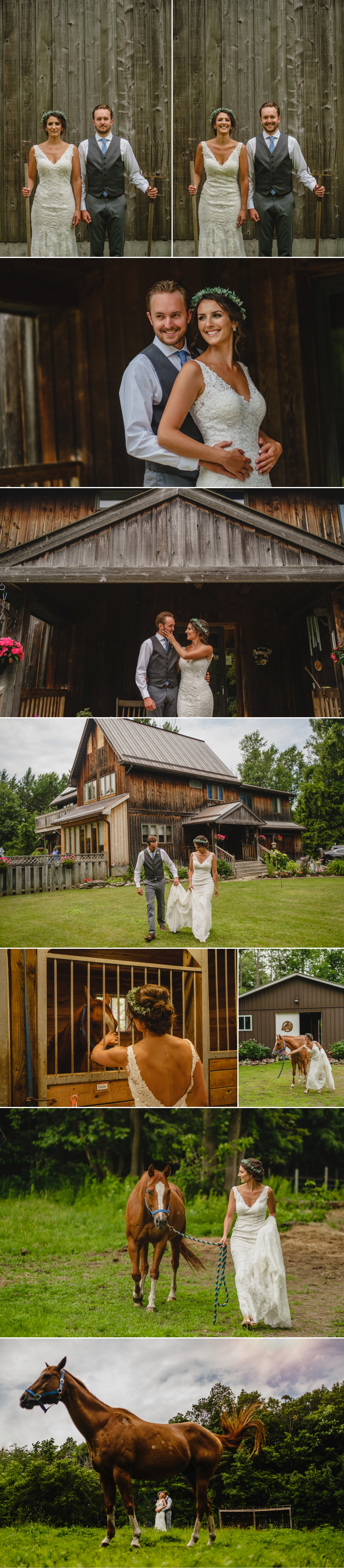 bride and groom portraits with horse on family farm during a metcalfe ontario wedding