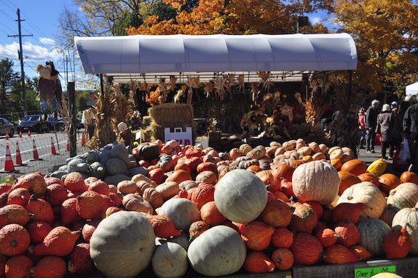 pumpkin pick 15 farm stand1