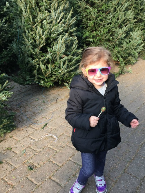 christmas 15 tree1