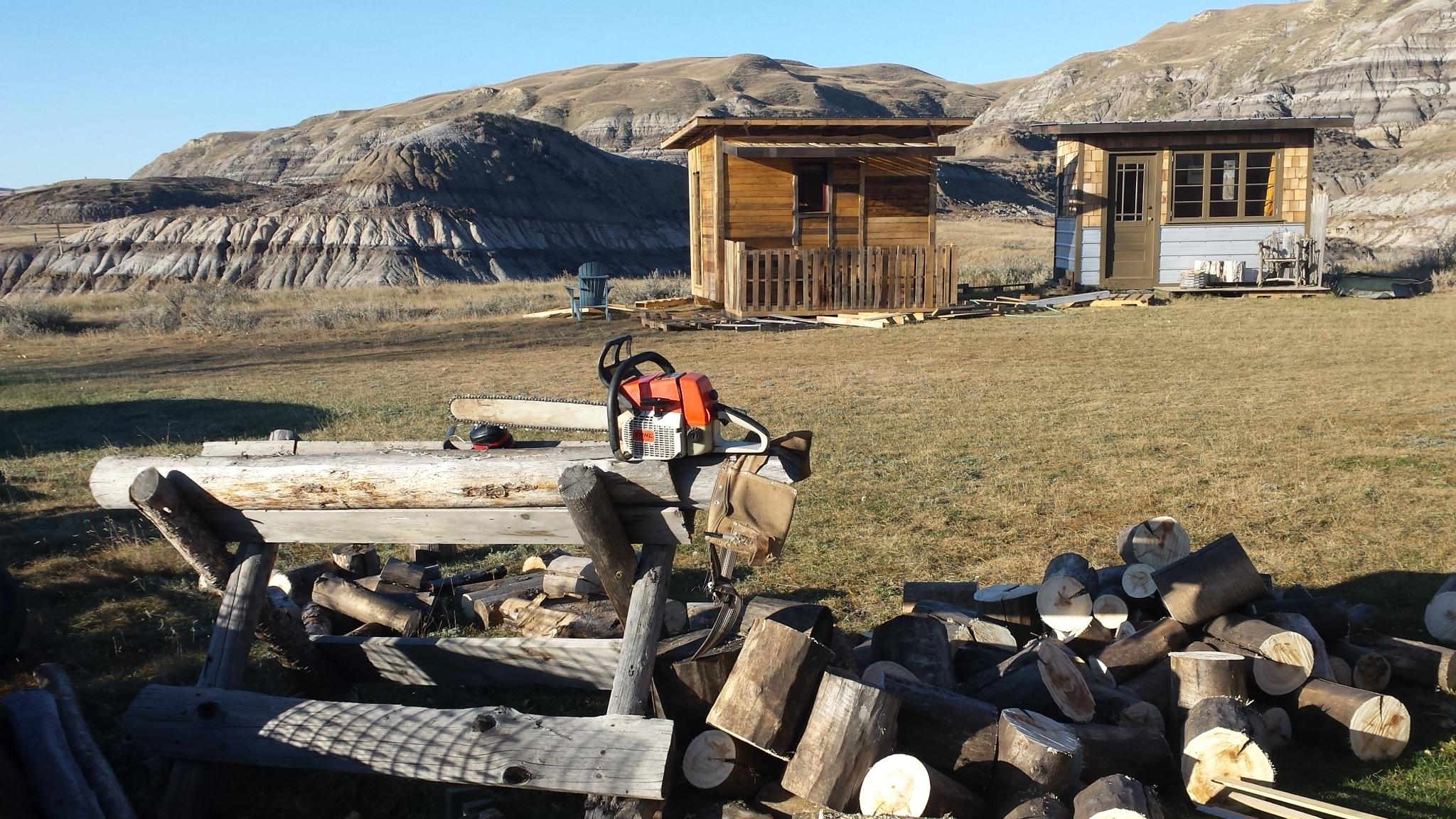 sawing wood 002.jpg