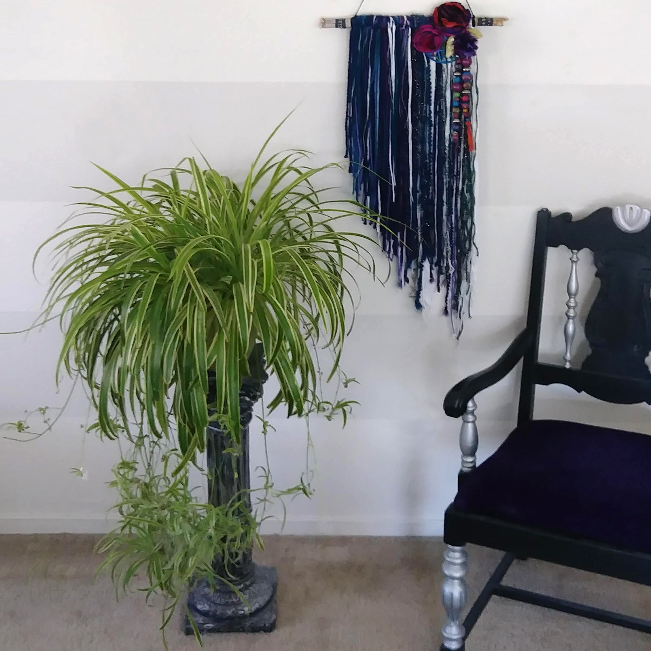 Easy to care for houseplants for eclectic home - spider plant - with Letting Go original art - Effortlessly Eclectic art & decor