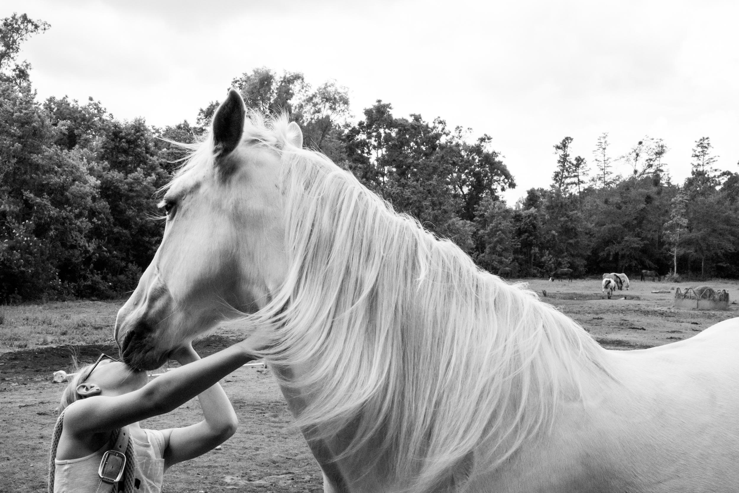 jacksonville-family-photographer-documentary-32.jpg