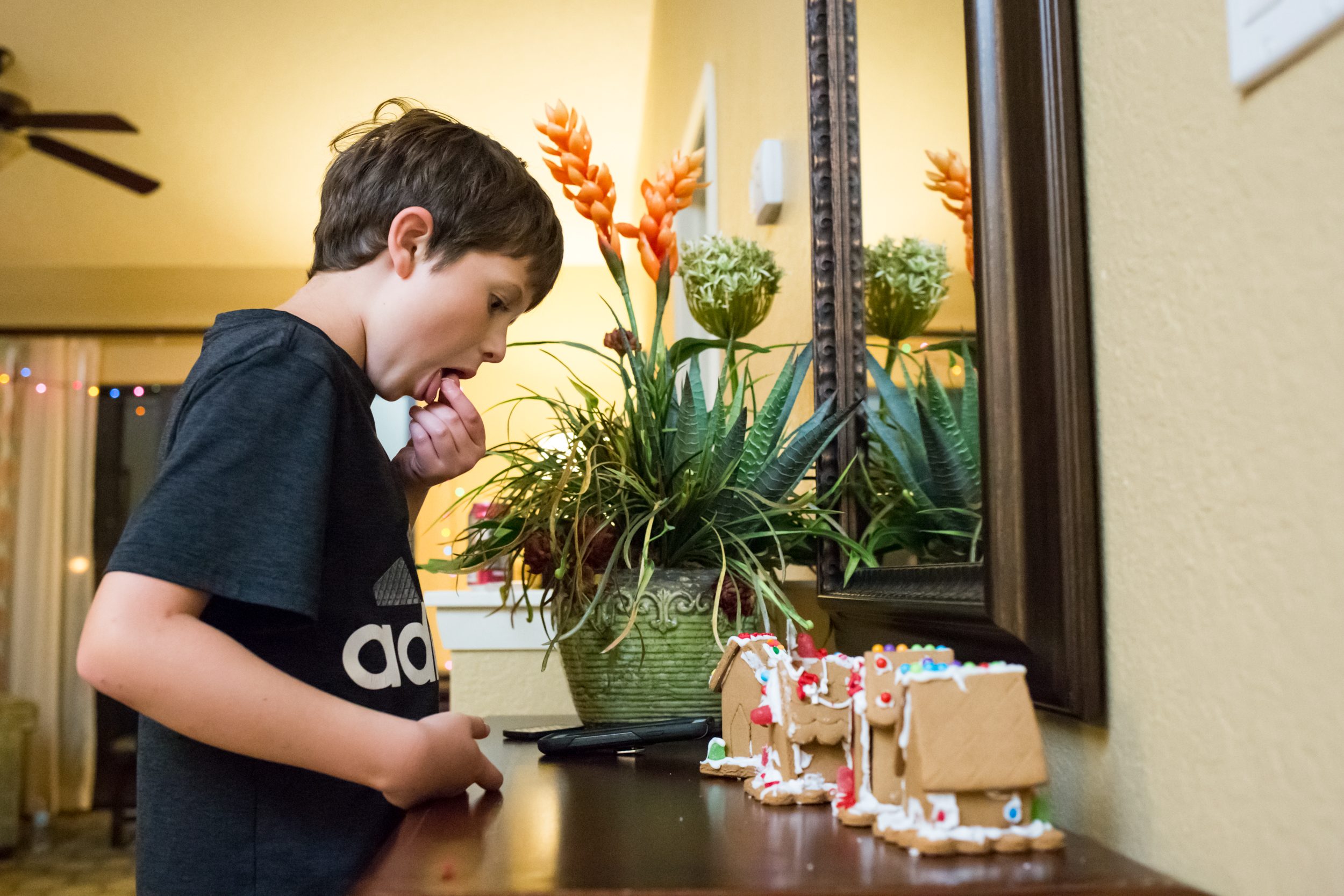 family-photographer-jacksonville-christmas-102.jpg