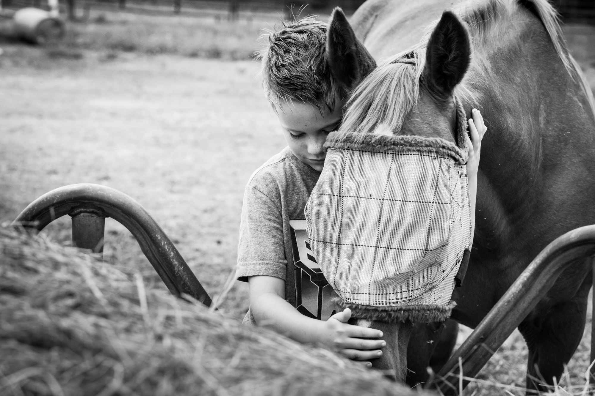 boy hugging his horse