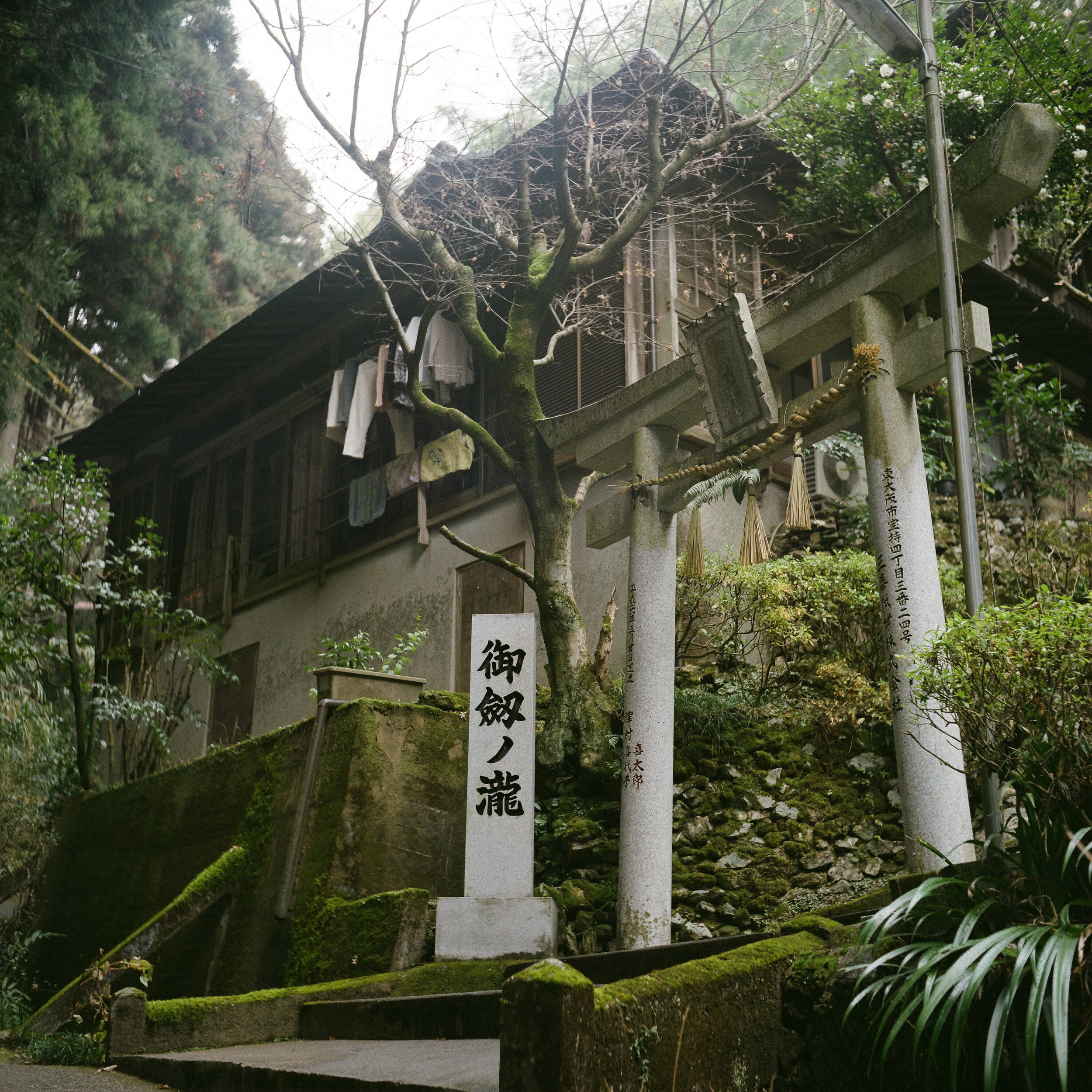 Kyoto, Japan 2018
