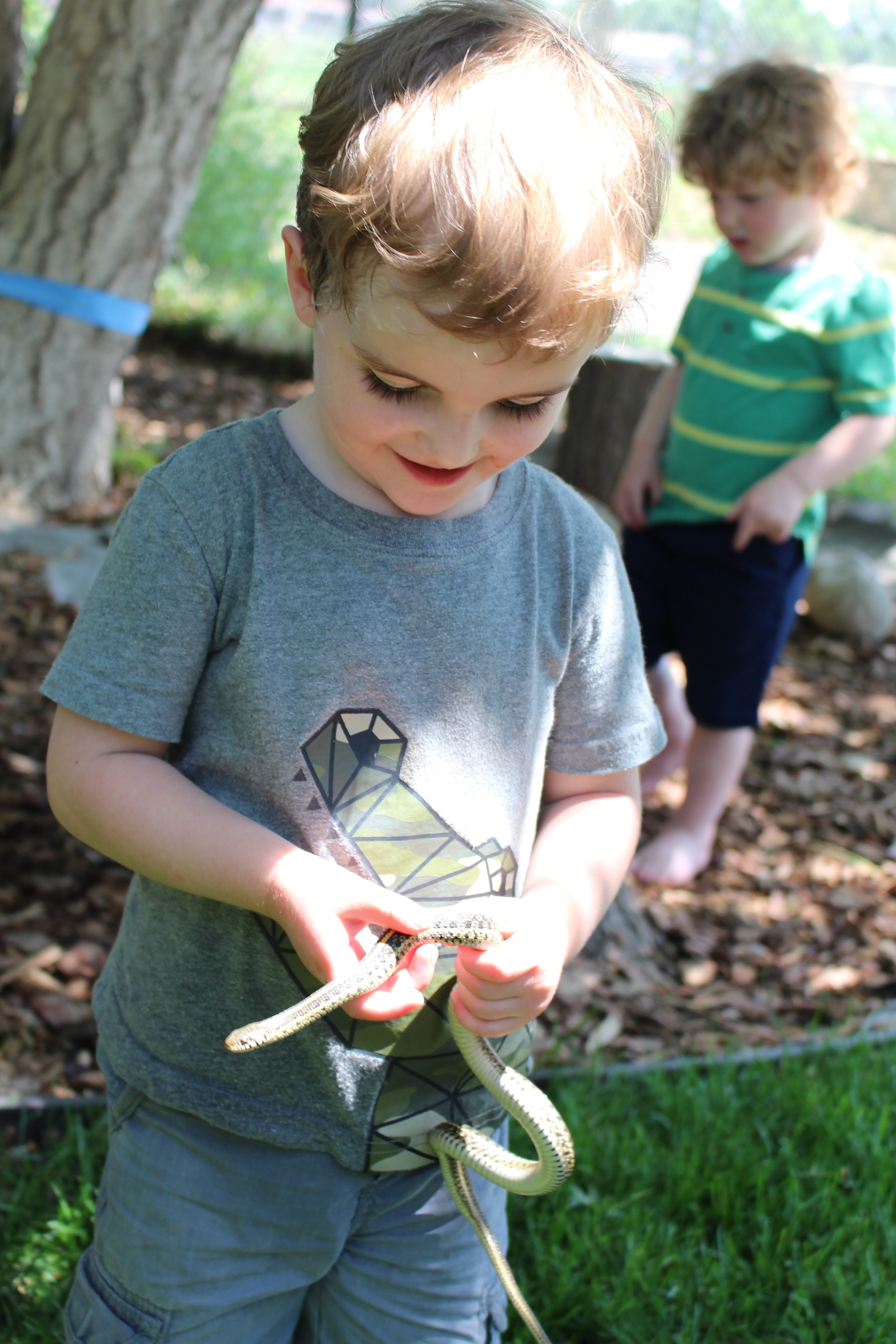 Chestnut Montessori is accepting 2020 Summer Camp applications. -