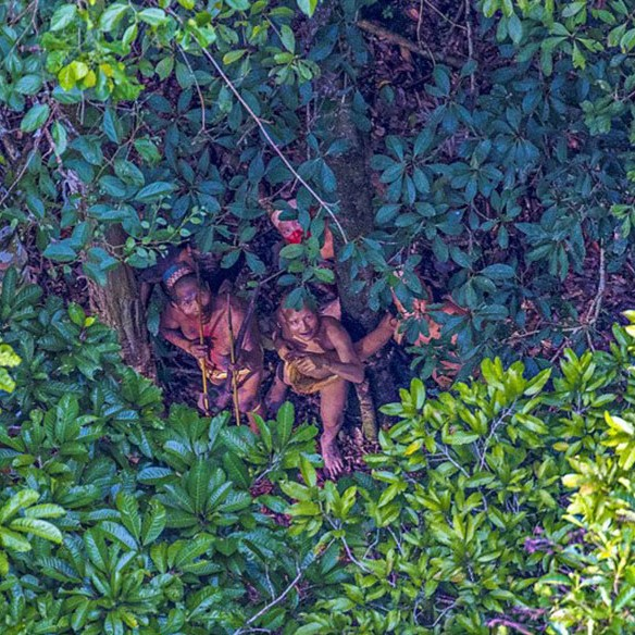 Amazon Tribe Cropped.jpg