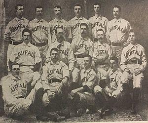 1890_Bisons.jpg