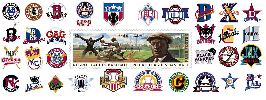 teams-of-the-negro-leagues-mike-baltzgar.jpg