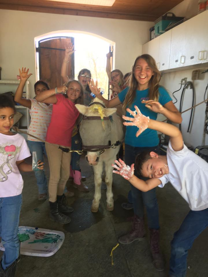 "Spring Break Camp - Camp includes: an hour long lesson with grooming and tacking up our horses. Then barn chores and horse maintenance. ""pony school""each day to learn something new about horses Wear long pants closed toed shoes and bring a lunch.Cost is $60 a day."