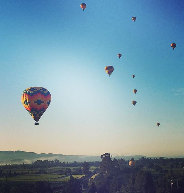 The sky's the limit ☀️ hot air ballooning in Napa Valley this morning!