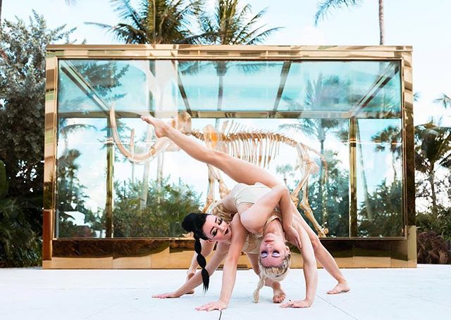 Catch our lovely bendy duo in our show @samsaracabaret #quixotic #samsaracabaret #faena #circus #circusinspiration #contortion #contortionist #flexibility #duo #miamievents #miamibeach 📷 @miamidanceart