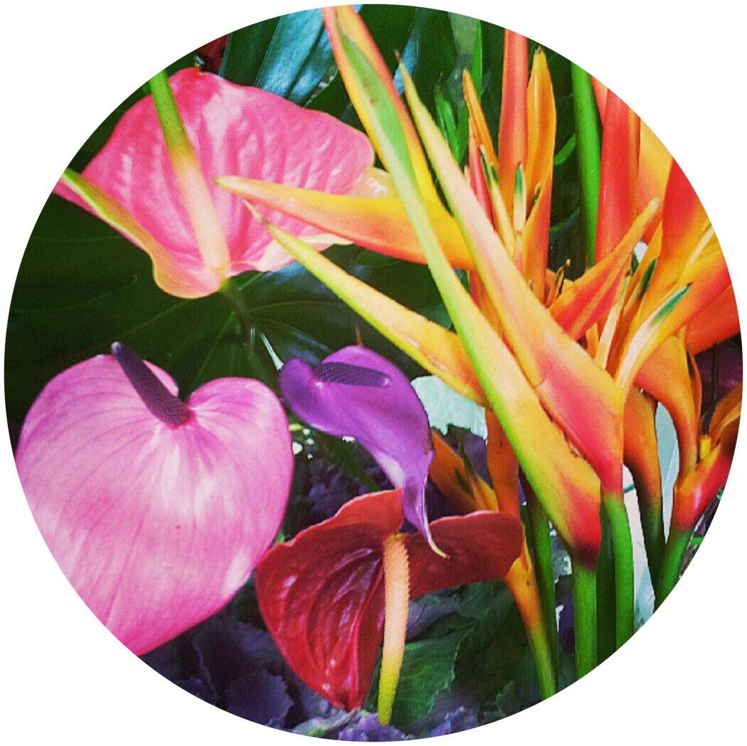 FlowersCircle3