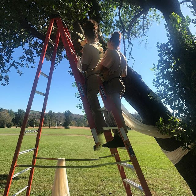 This is a picture of my spirit supporting my physical self on this ladder. I am building a relationship with ladders although I am a firm believer that you shouldn't step on a ladder that you can't carry yourself.