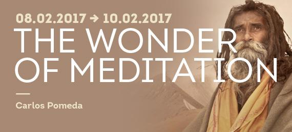 AY2017_Meditation&Patanjali_CarlosPomeda_CCbanner1.jpg