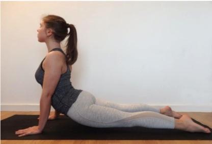 chien-tete-haut-yoga-debutant