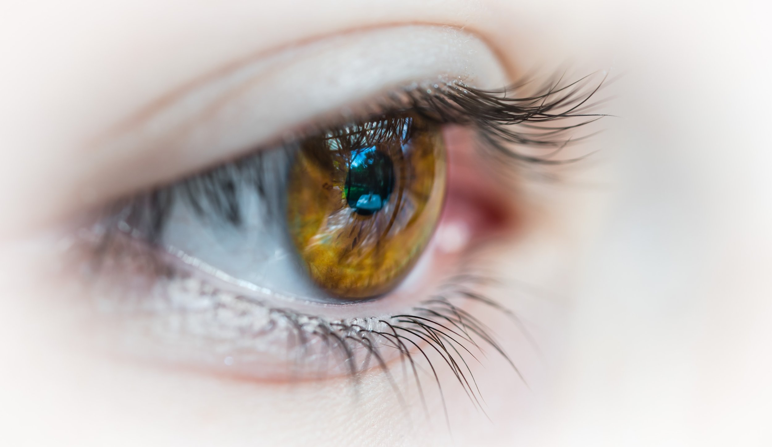 Le Yoga des yeux pour soulager son regard