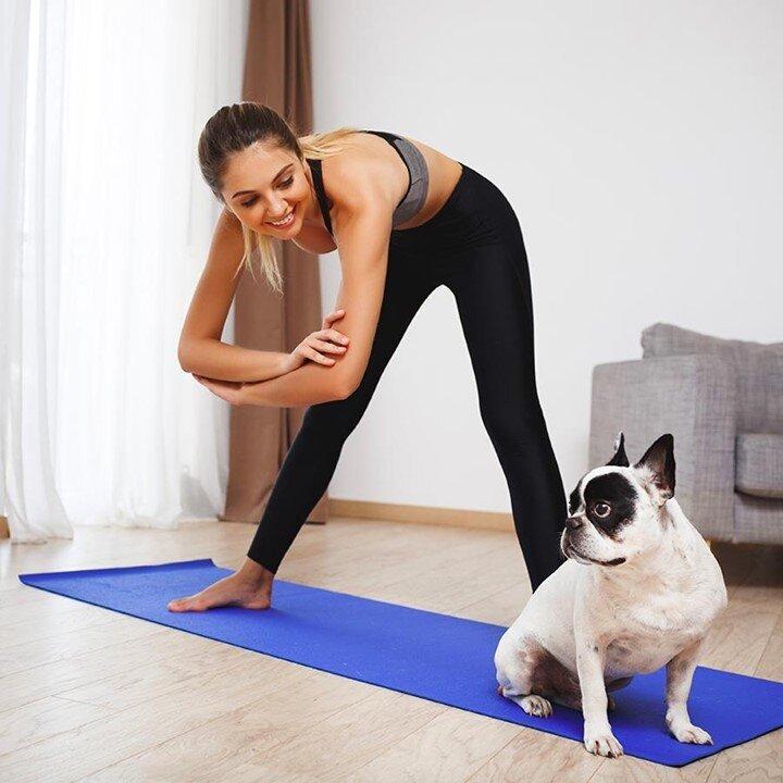 Faites-nous rêver avec une adorable photo de votre animal et vous durant une séance de Yoga en utilisant #olybechallenge ! ✨    #fitnessgirl #fitfrenchies #fitspo #fitfam #fitnessmotivation #sport #sportlife #yogafrance #yogaparis9 #yogaparis11ème #yogaparislife #yogaparis17 #olybe #olybees #olybeshine #olybeyoga